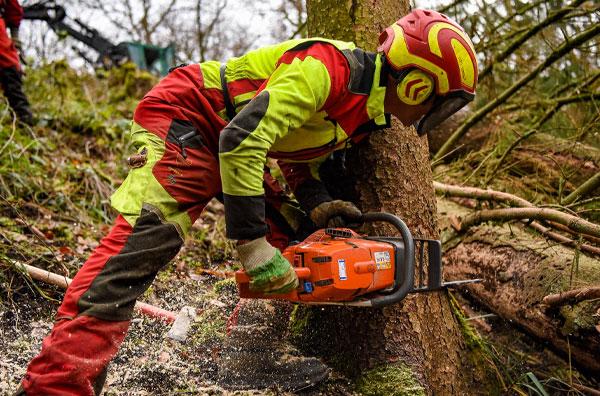 Marco Susenburger GmbH Forstdienstleistungen