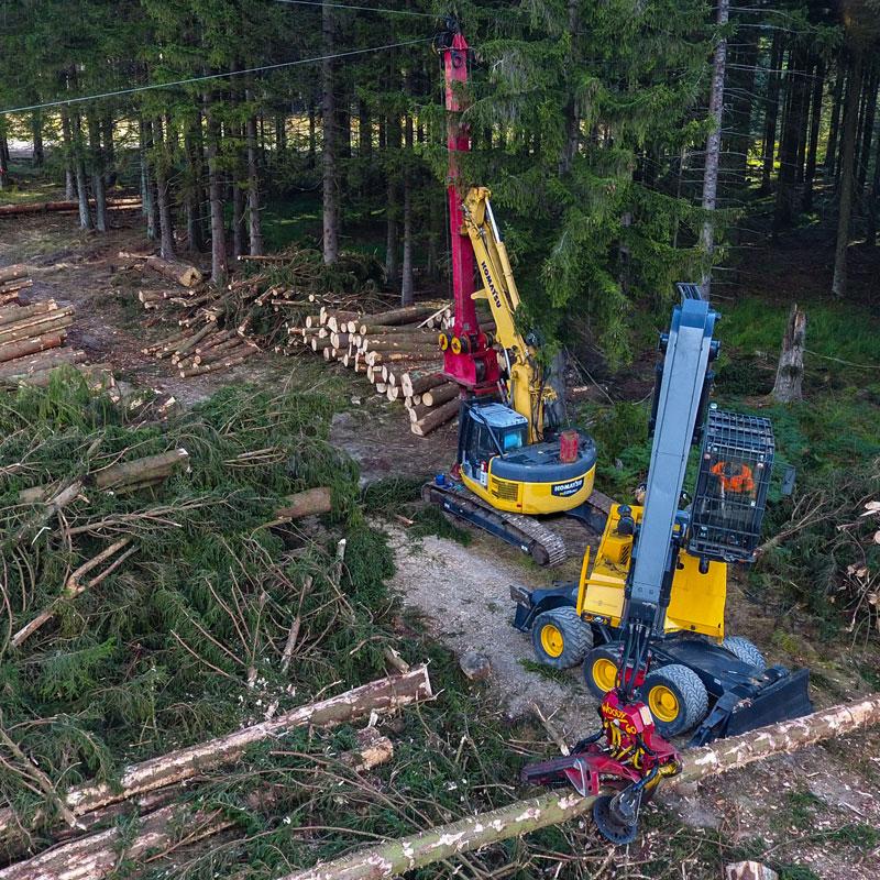 Susenburger Holzbringung