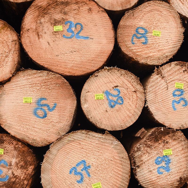 Susenburger Holzdienstleistungen & Holzhandel